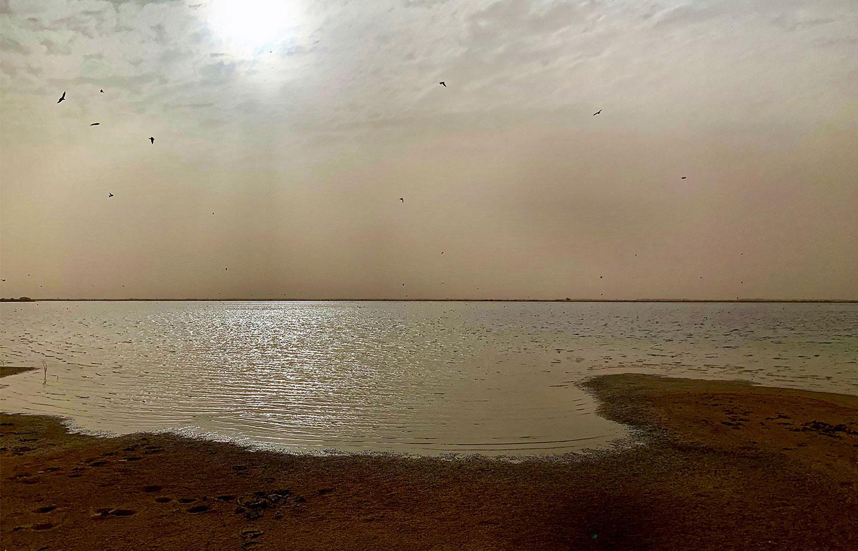 The Senegal River Delta at dusk.