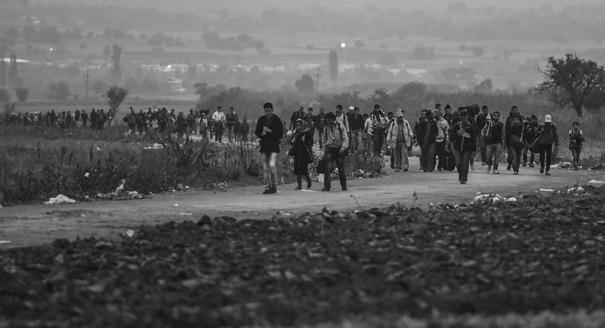 Есть ли у ЕС роль в сирийском конфликте?