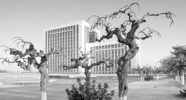 Узбекистан: транзит пока не виден