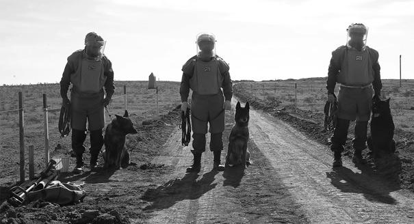 Мир и реформы: роль Европы в Закавказье после карабахской войны