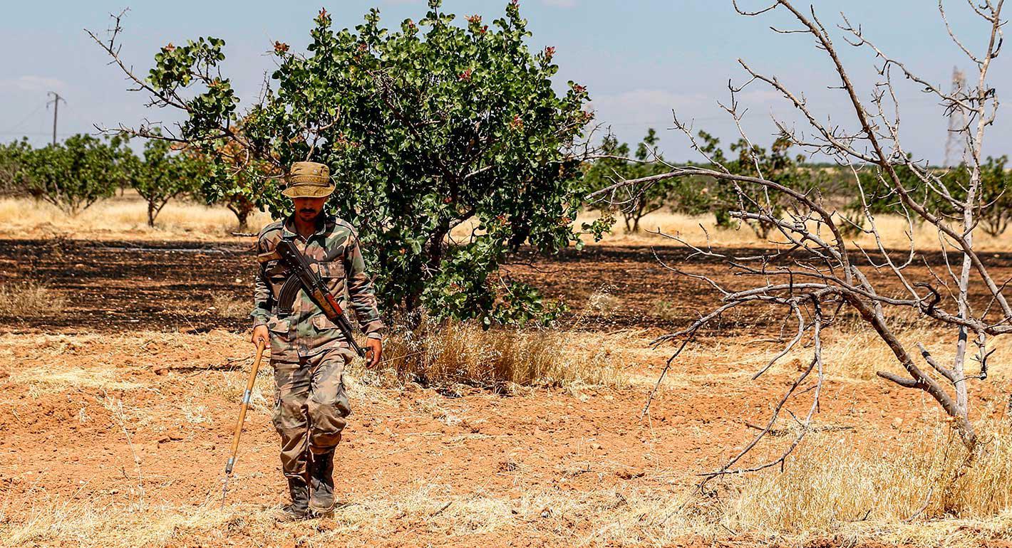 زراعة الفساد وحصاد الفقر: انهيار قطاع الزراعة في سوريا والعراق بعد الحرب